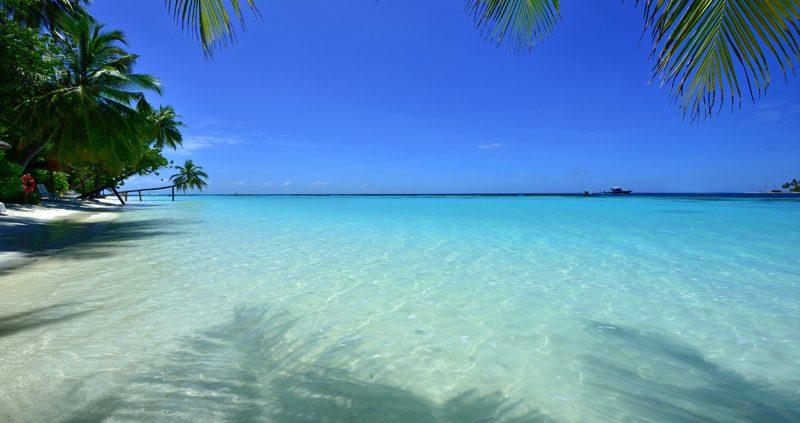 Choosing to Cruise and Stay in the Maldives - island paradise