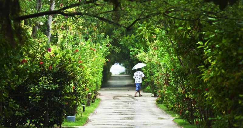 Adaaran Resorts - Hudhuranfushi gardens