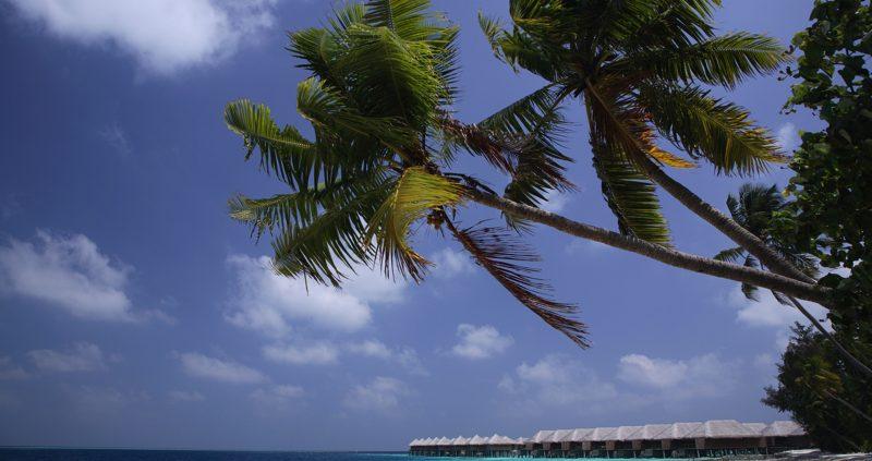 Coco Resorts Maldives - Coco Bodu Hithi