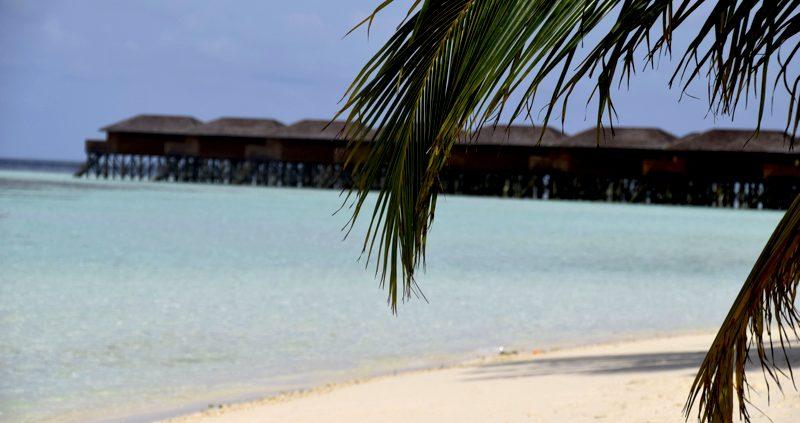 Vilamendhoo Island Resort water villas from beach