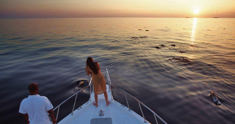 Soneva-Fushi Dolphin Cruise