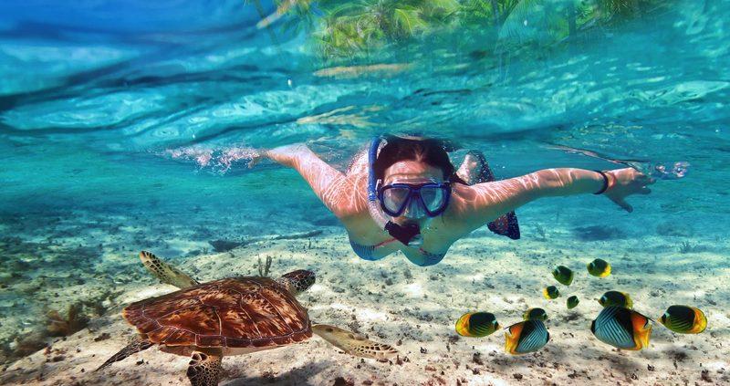 Snorkeling at Vilu Reef Maldives