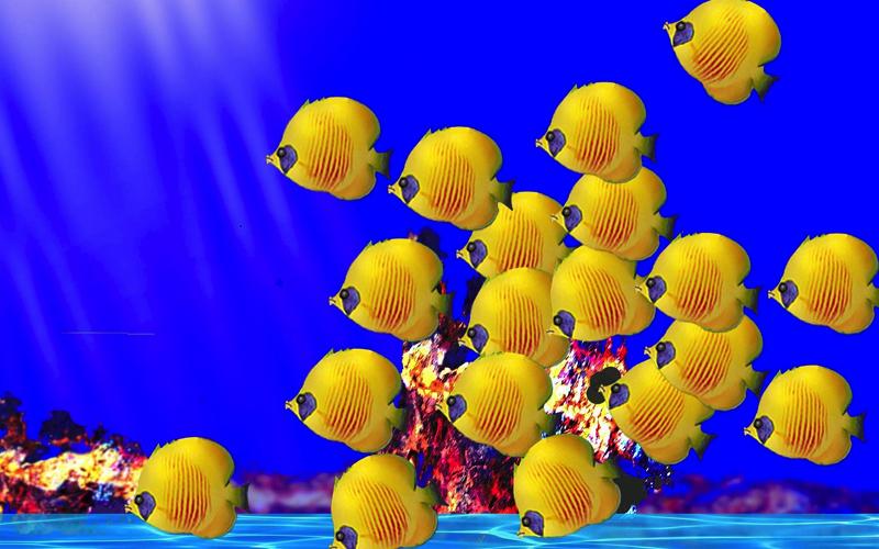 outrigger-konotta-maldives reef