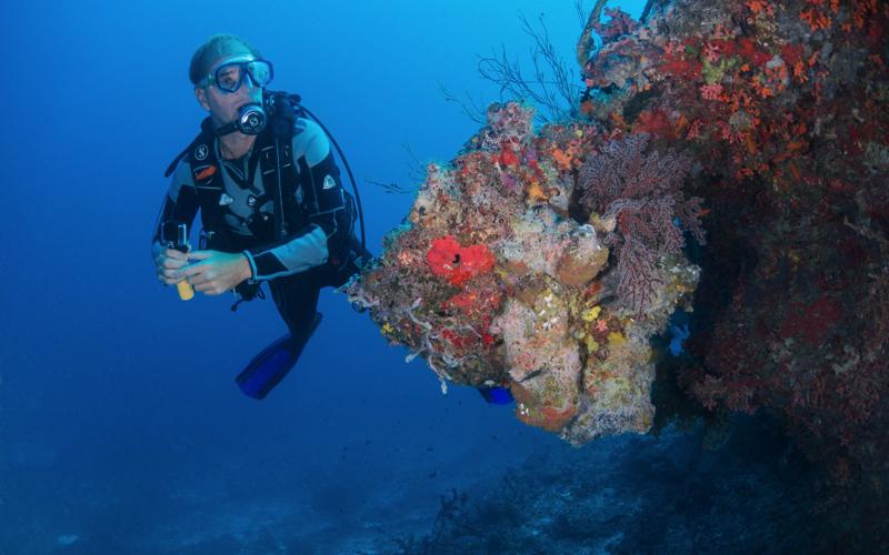 Diving at Milaidhoo Island Resort Maldives