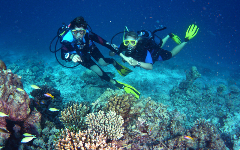 Canareef resort Maldives, diving