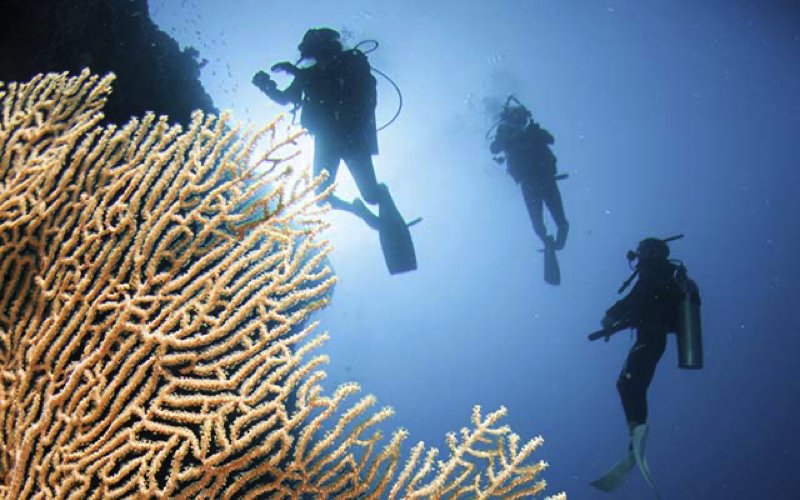 Diving at Centara Grand Island Resort Maldives