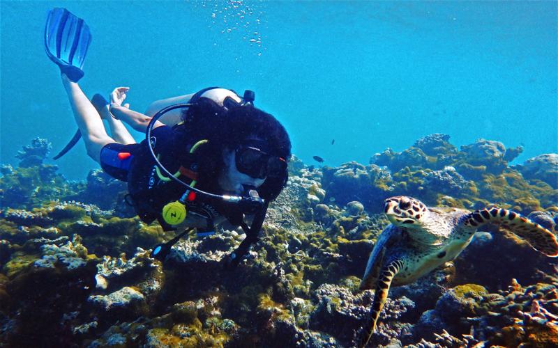 Diving raa atoll